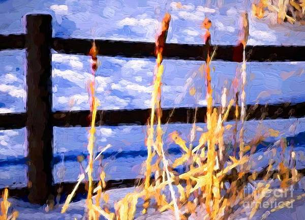 Ish Wall Art - Photograph - Cattails And Fence by Bob Lentz