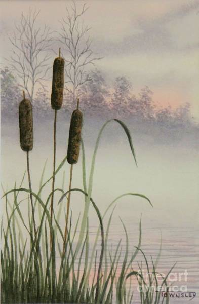 Bullrush Painting - Cattails by Frank Townsley