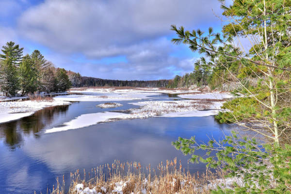 Photograph - Cattails On The Moose River by David Patterson
