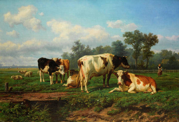 Sickle Painting - Cattle At Rest In A Meadow by Eugene Verboeckhoven