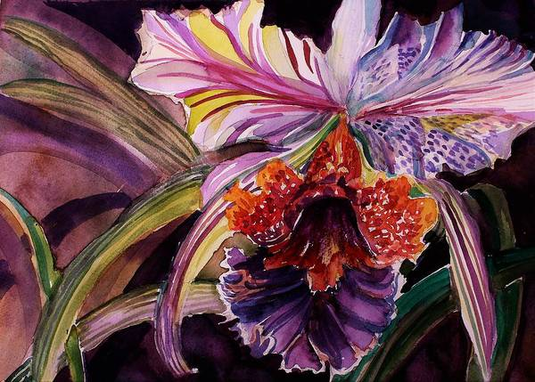Wall Art - Painting - Cattleya Orchid by Mindy Newman