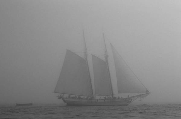 Photograph - Caught In A Fog by David Shuler
