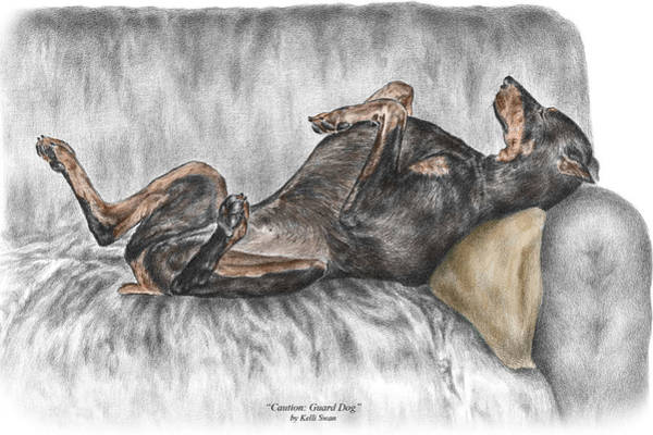 Doberman Wall Art - Drawing - Caution Guard Dog - Doberman Pinscher Print Color Tinted by Kelli Swan