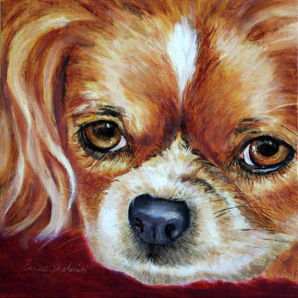 Wall Art - Painting - Cavalier King Charles Spaniel by Portraits By NC