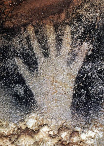 Photograph - Cave Art: Pech Merle by Granger