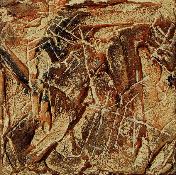 Wall Art - Painting - Cave Bird by Sonja Olson