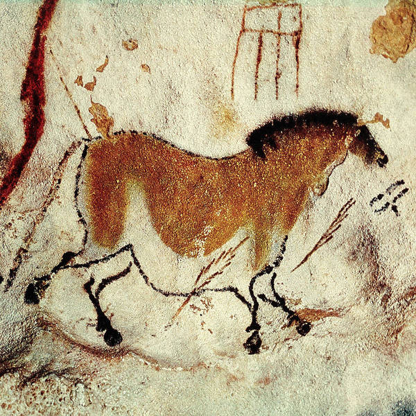 Photograph - Cave Painting 5 by Andrew Fare