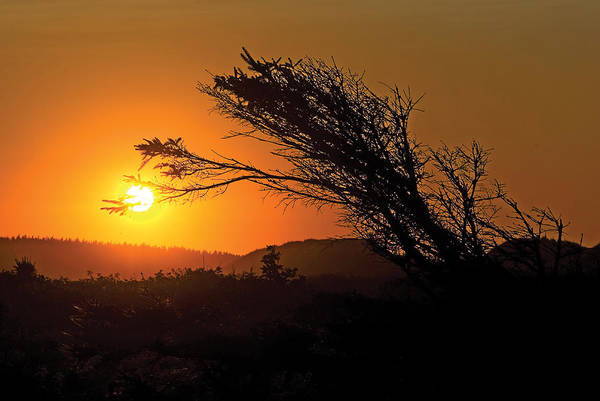 Photograph - Cavendish Beach Sunset-2 by Steve Somerville