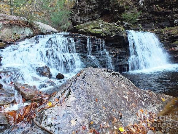 Sullivan County Photograph - Cayuga Falls 3 - Ricketts Glen by Cindy Treger
