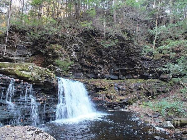 Sullivan County Photograph - Cayuga Falls 4 - Rictetts Glen by Cindy Treger