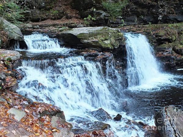 Sullivan County Photograph - Cayuga Falls - Ricketts Glen by Cindy Treger