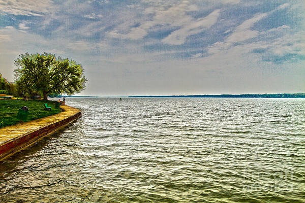 Photograph - Cayuga Lake Boardwalk by William Norton