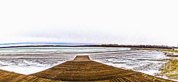 Photograph - Cayuga Winter by William Norton