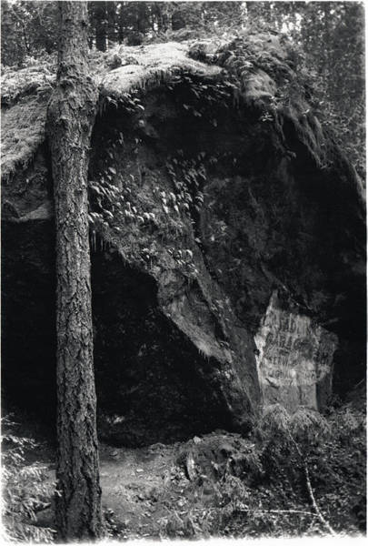 Photograph - Cazadero, Ca  Vintage Sign by Erik Paul