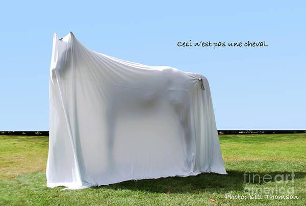 Photograph - Ceci N'est Pas Une Cheval by Bill Thomson