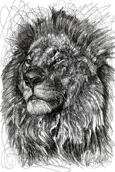 Big Cat Wall Art - Drawing - Cecil The Lion by Michael Volpicelli