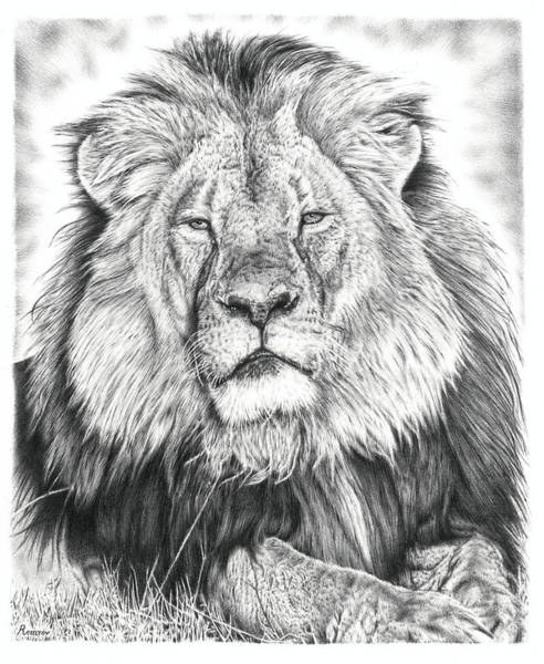 Drawing - Cecil The Lion  by Remrov
