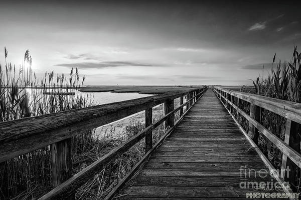 Photograph - Cedar Beach Sunset Black And White by Alissa Beth Photography