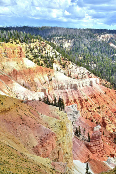 Photograph - Cedar Breaks In Utah by Ray Mathis