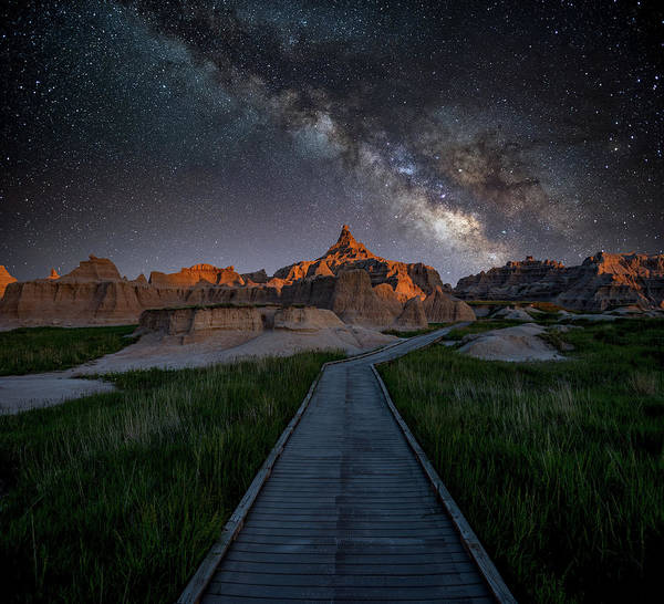 Photograph - Cedar Pass Milky Way by Darren White