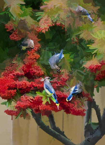 Waxwing Digital Art - Cedar Waxwings 1 by Patricia Stalter