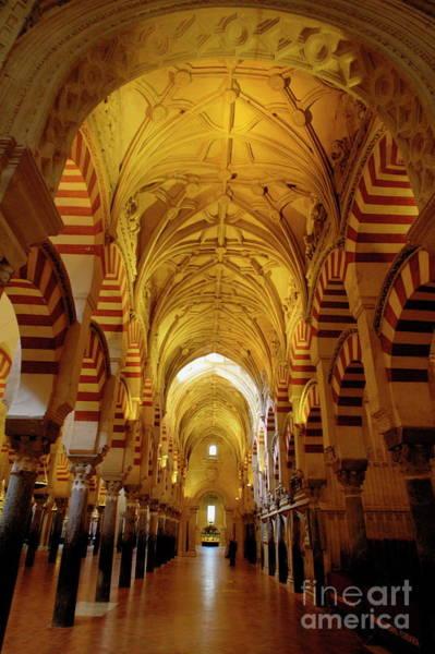 Wall Art - Photograph - Ceilings Inside The Catedral De Cordoba by Sami Sarkis