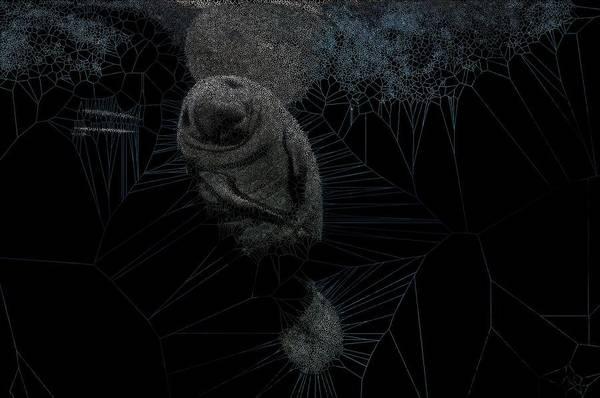 Digital Art - Celebrate by Stephane Poirier