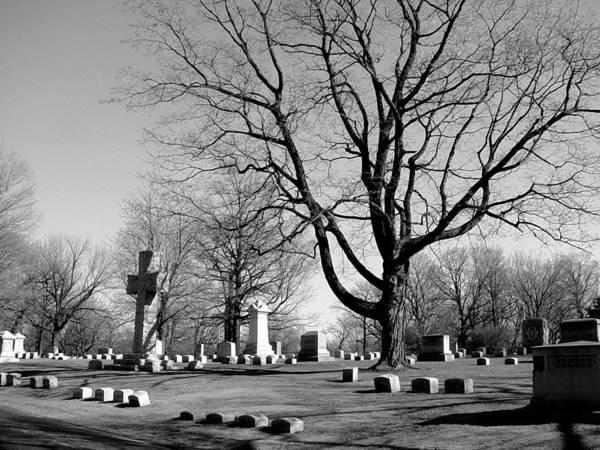 Photograph - Cemetery 5 by Anita Burgermeister