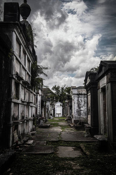 Photograph - Cemetery Row by Laura Roberts
