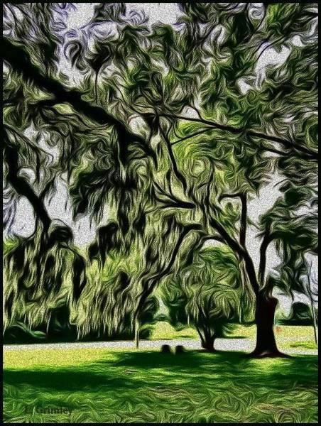 Wall Art - Digital Art - Cemetery Trees by Lessandra Grimley