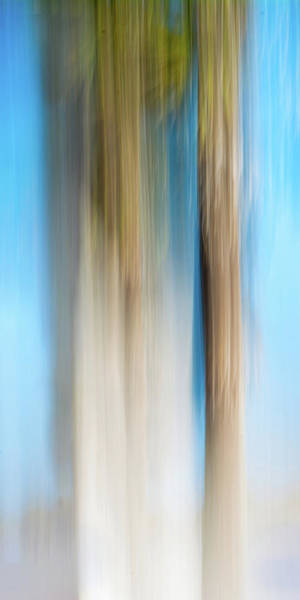 Digital Art - Center Panel Movign Trees 13 by Gene Norris