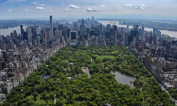 Photograph - Central Park Aerial by Rand
