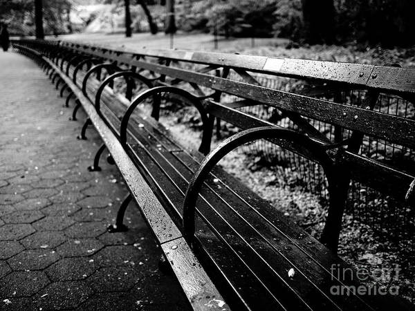 Photograph - Central Park Bench by Miles Whittingham