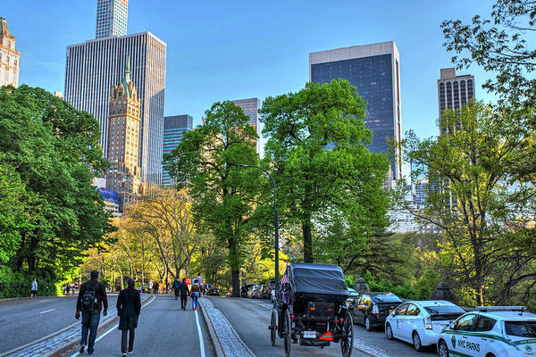 Photograph - Central Park Carriage Path New York Ny by Toby McGuire