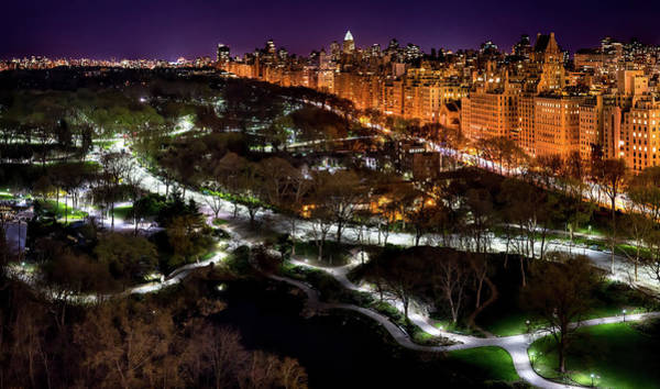 Photograph - Central Park In The Spring by M G Whittingham