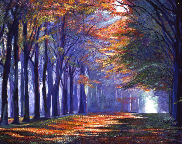 Wall Art - Painting - Central Park Light by David Lloyd Glover