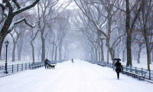 Painting - New York City Central Park Mall In Winter by Christopher Arndt