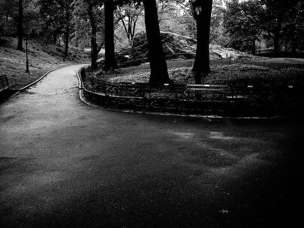 Photograph - Central Park Path by M G Whittingham