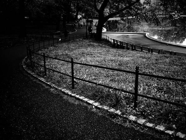 Photograph - Central Park View by M G Whittingham