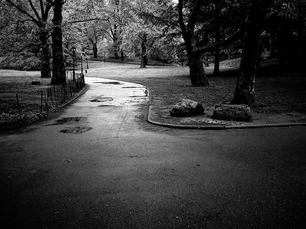 Photograph - Central Park Path V by M G Whittingham