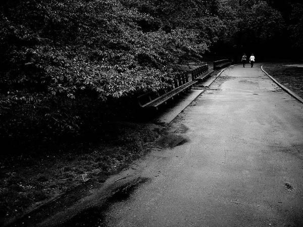 Photograph - Central Park Path 6 by M G Whittingham