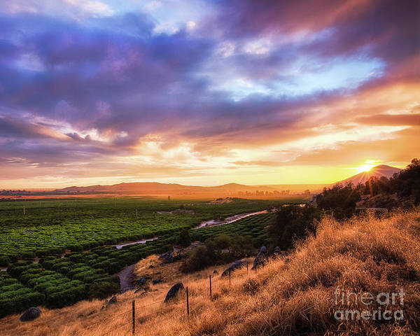 Photograph - Central Valley by Anthony Michael Bonafede