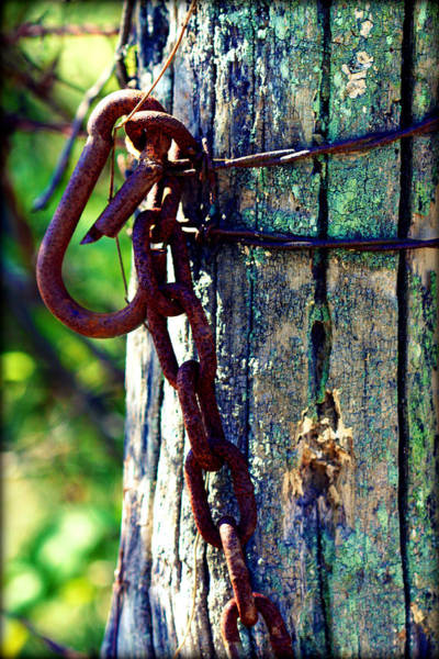 Photograph - Chained Post by Susie Weaver