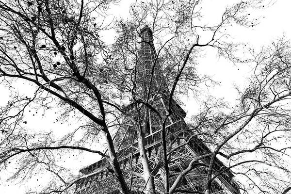 Wall Art - Photograph - Champ De Mars View Of The Eiffel Tower by John Rizzuto