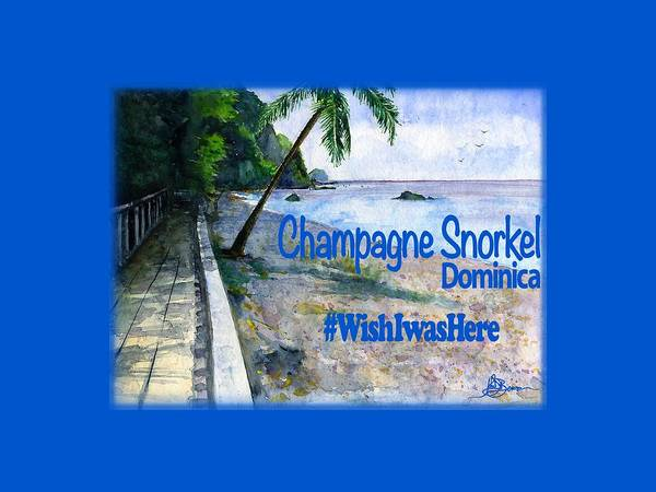 Wall Art - Painting - Champagne Snorkel Dominica Shirt by John D Benson
