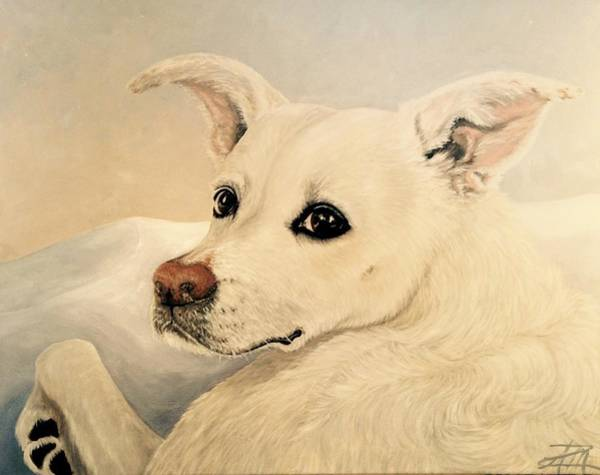 Painting - Chance by Ana Marusich-Zanor