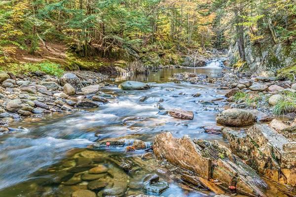 Sullivan County Photograph - Chandler Mill Stream by Tim Sullivan