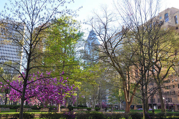 Rittenhouse Square Wall Art - Photograph - Change Of Seasons - Rittenhouse Square - Spring by Bill Cannon