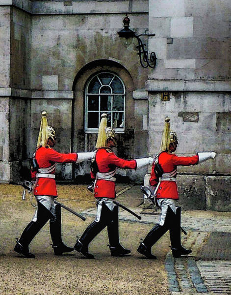 Photograph - Changing Guards by Coleman Mattingly