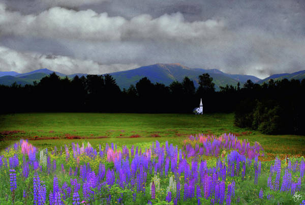 Photograph - Chapel In The Lupine Mindscape by Wayne King